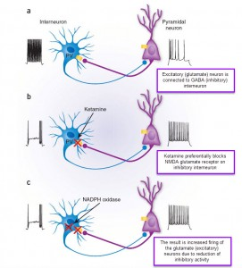 ketamine for depression - GABA interneuron effects