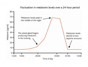 melatonin and time of day