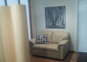 Mountain View Psychiatrist Office Interior