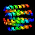 Dopamine 2 Receptor