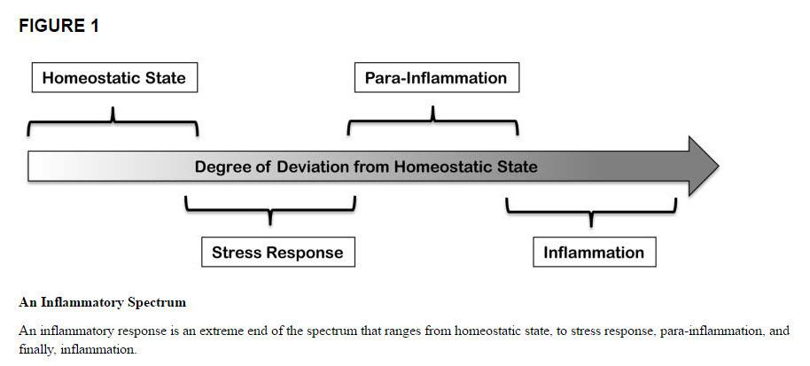 inflammatory spectrum
